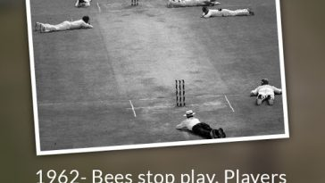 1962- Bees stop play