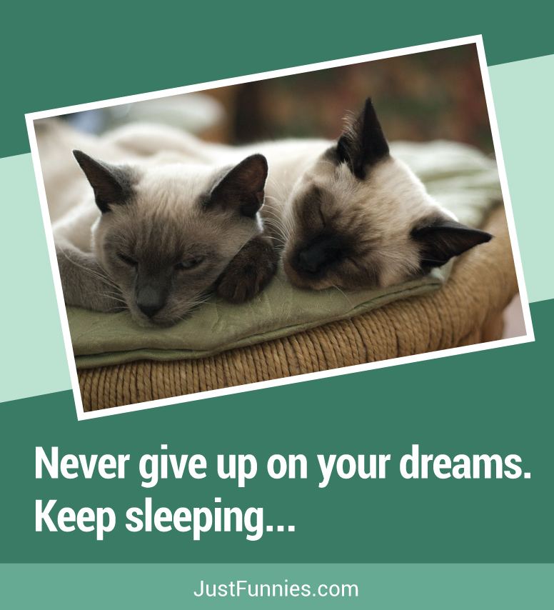 Never give up on your dreams... Keep sleeping