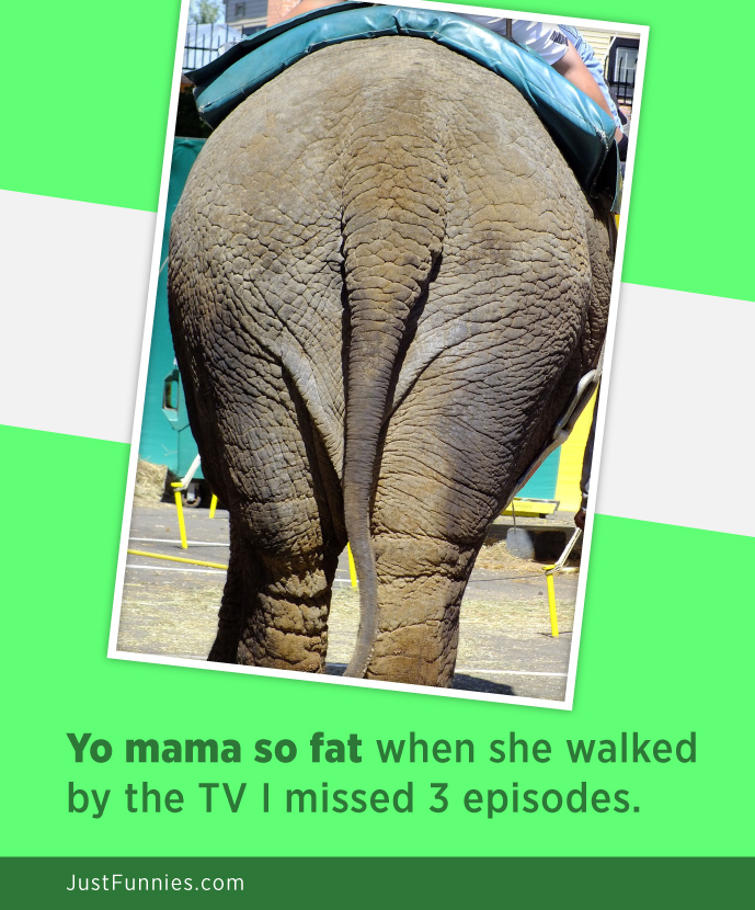 Yo Mama so fat when she walked by the tv i missed 3 episodes!