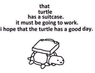 that turtle