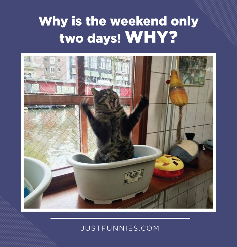 Why is the weekend only two days! WHY