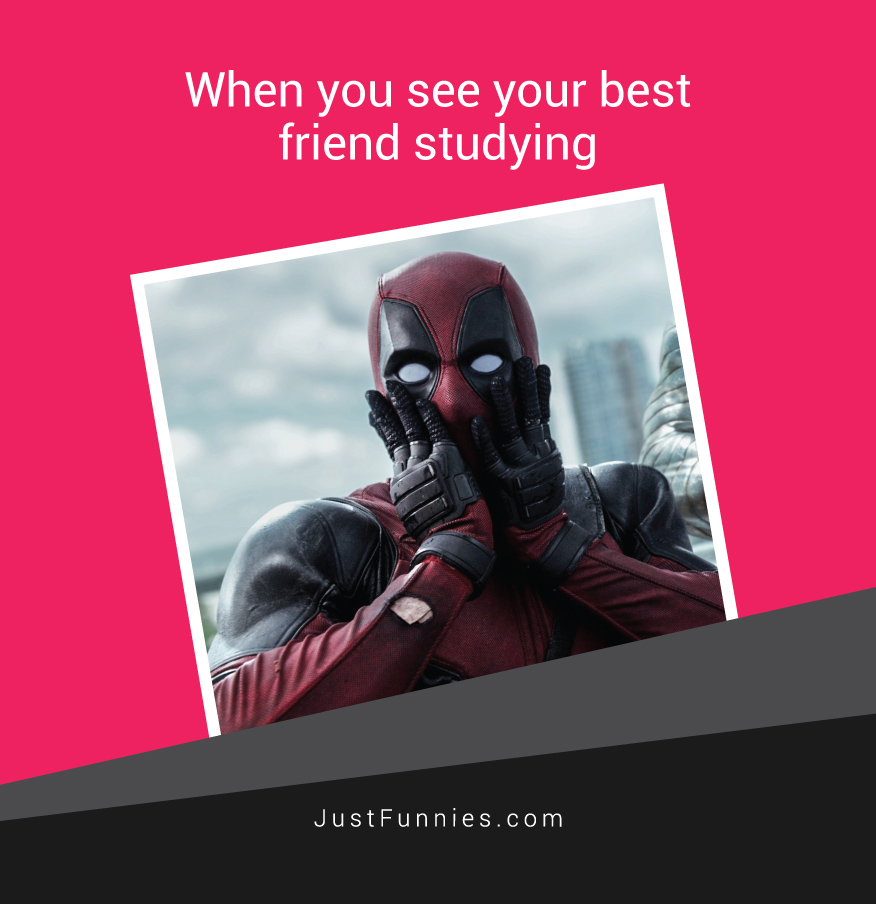 when-you-see-your-best-friend-studying